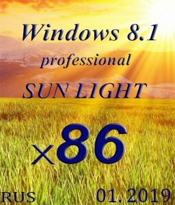 Windows 8.1 Professional SUN LIGHT by novik (mini+Portable) (x86) (01.2019) [Rus]