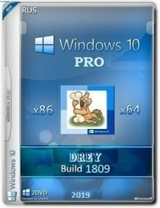 Windows 10 Pro 17763.437 RS5 RTM DREY by Lopatkin (x86-x64) (2019) [Rus]